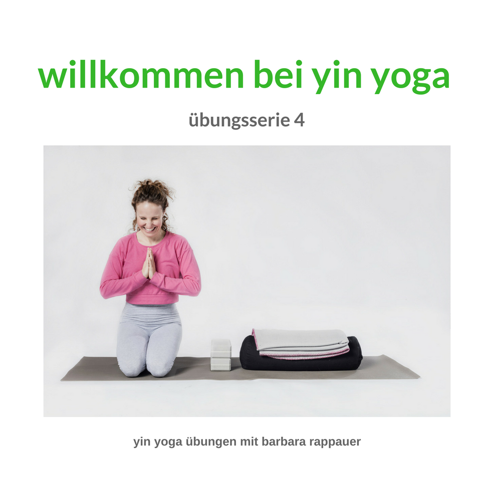 yin yoga powered by poweryoga vienna